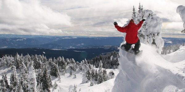 snowbored600_300